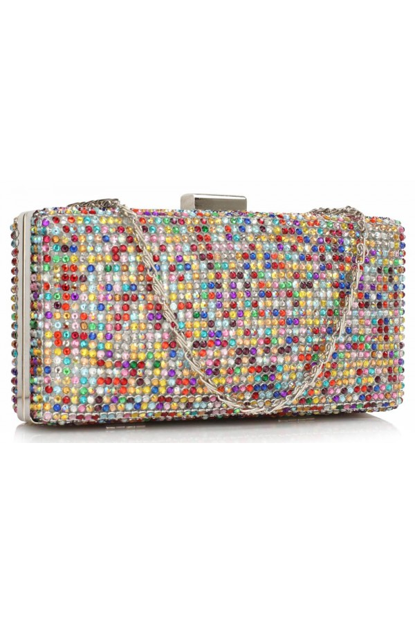 Clutch Multi Colour Evening